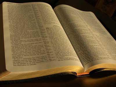 Bibliaolvasás 2013